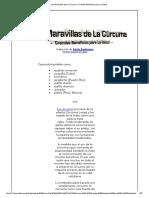 Las Maravillas de La Cúrcuma - Grandes Beneficios Para La Salud