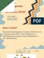 chem 353 pyruvate dehydrogenase deficiency