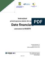SIIIR Instructiuni de Lucru Date Financiare
