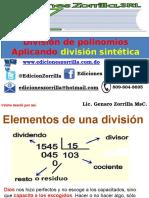 7 División Sintetíca WEB