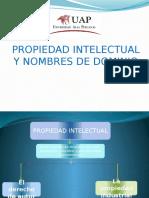 Propiedad Intelectual Exponer