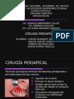 22925989-Cirugia-Apical