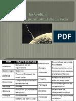 Celula Generalidades 2014 (1)