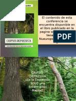 Presentación Cripsis Depresiva Congreso SVP 2015
