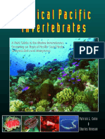Tropical Pacific Invertebrates