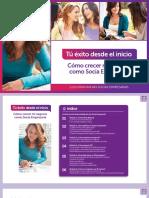 Manual Induccion SE PE