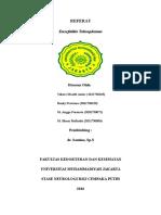 Referat Cerebral-Toxoplasmosis 2003