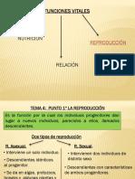 tema4b.pdf