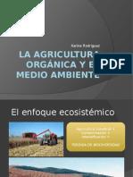La Agricultura Orgánica y El Medio Ambiente
