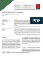 L Extenseur Ulnaire Du Carpe Et Sa Pathologie 2012 Revue Du Rhumatisme Monographies