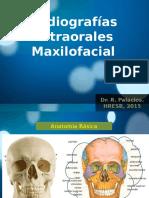 Radiografias en Cirugia Maxilofacial