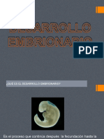 desarrollo_embrionario2