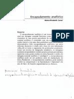 CONTE, M-E_ Encapsulamento Anafórico