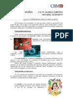 Repaso en Español Unidad 3 Health and Illness