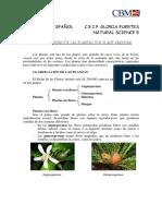Repaso en Español Unidad 4 the Plant Kingdom