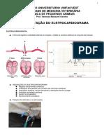 Eletrocardiograma cães e gatos  - I