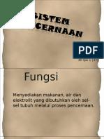 Sistem Digesti