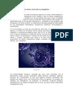 Los Virus-Ciclo Lítico y Lisogénico