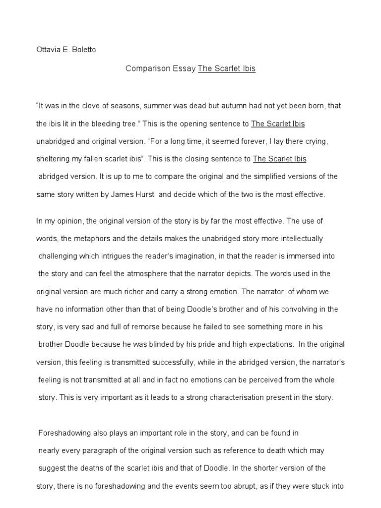 Religion Essays  Good Extended Essay Topics also How To Write A Diagnostic Essay V Outline For Argumentative Essay