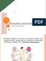 Tejido Conjuntivo Expo