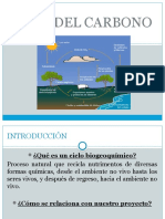 Presentacion Ciclo Del Carbono