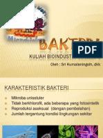3. Bakteri