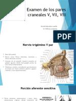 Examen de Los Pares Craneales v, VII
