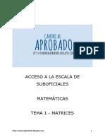 Matemáticas Tema 1