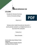 Practica 4. PRODUCCIÓN E IDENTIFICACIÓN DE PIRUVATO Y ACETALDEHÍDO DURANTE LA FERMENTACIÓN DE LA GLUCOSA POR LEVADURA
