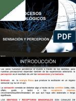 SENSACION Y PERCEPCION 1 PARTE.ppt