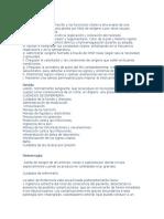 Terminos utilizados en Enfermeria