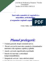 Inervatia Somatica Si Vegetativa