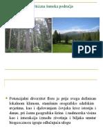 Utjecaj Gospodarskih Mjera Na Diverzitet Šumskog Drveća