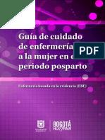 Guia Posparto