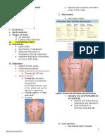 Respiratory System Assessment