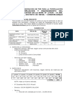 Datos Para Elab. de Tdr Para La Form. Del Pip - Bca. Ambuja