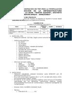 Datos Para Elab. de Tdr Para La Form. Del Pip - Nvo. Seasmi