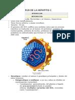 Virus de La Hepatitis c
