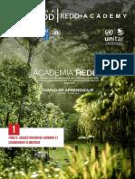 DIARIO DE APRENDIZAJE ACADEMIA REDD+