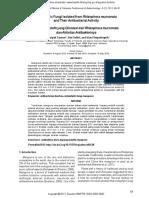 Endophytic Fungi Isolated From Rhizophora Mucronata spp