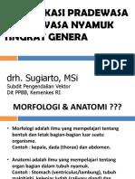 Identifikasi nyamuk tingkat genera_Des 2015.pdf