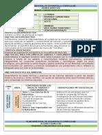 Plan Bimestral de Desarrollo Curricularsexto2016