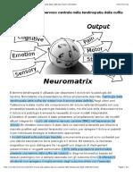 Il Ruolo Del Sistema Nervoso Centrale Nella Tendinopatia Della Cuffia