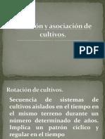 Rotación y Asociación de Cultivos