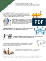 14 Principios de Administración de Fayol
