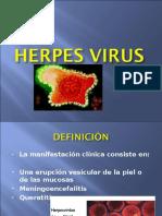 Slides Herpes Genital