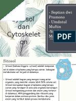 2.Sitosol Dan Sitoskeleton
