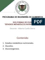 ESTADIOS METABÓLICOS NUTRICIONALES.pdf