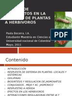 Defensa en Plantas Jasmonatos 130127194454 Phpapp01