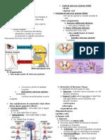 Nervous System (1)